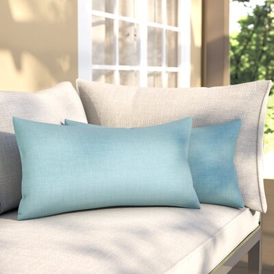 Salvador Kidney Lumbar Pillow Color: Breeze