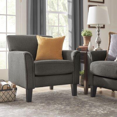 Minisink Armchair Upholstery: Dark Gray