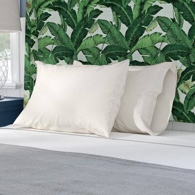 Sint Pillow Case Color: Shell