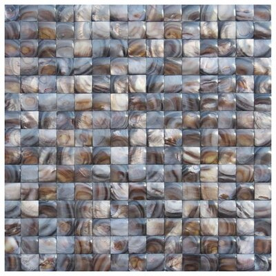 Savona 0.8 x 0.8 Seashell Mosaic Tile in Brown