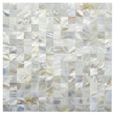 Loreto 0.8 x 0.8 Seashell Mosaic Tile in White