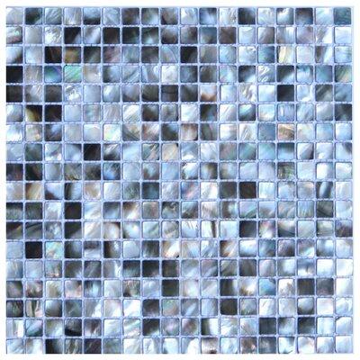 Rimini 0.6 x 0.6 Seashell Mosaic Tile in Black/Ice Blue