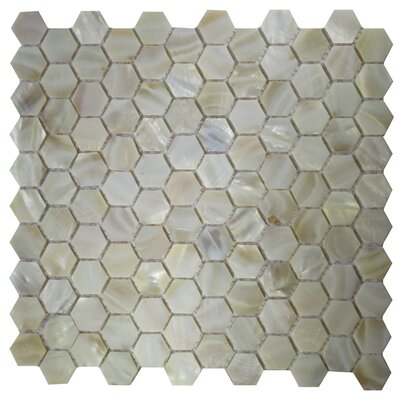 Lucca 0.8 x 0.8 Seashell Mosaic Tile in White