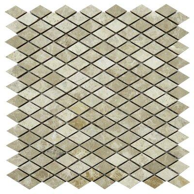 Fiuggi Marble Mosaic Tile in Beige