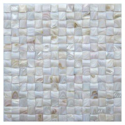 Livorno 0.8 x 0.8 Seashell Mosaic Tile in White