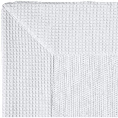 Ewald Absorbent 100% Cotton Bath Rug Size: 0.8 H x 27.6 W x 19.7 D, Color: White