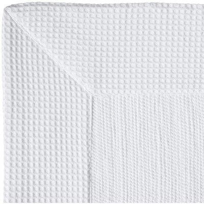 Ewald Absorbent 100% Cotton Bath Rug Size: 0.8 H x 39.4 W x 23.6 D, Color: White