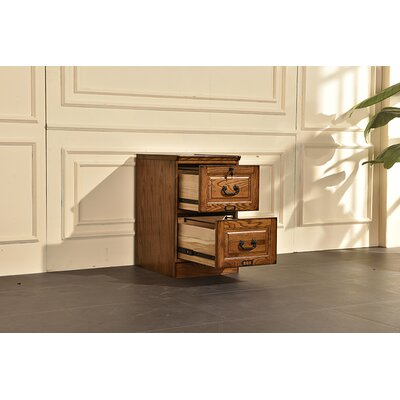 Sarthak 2 Drawer Vertical Filing Cabinet DRBH4140 45195432