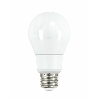 Frosted A19 E26 Light Bulb (Set of 6) Wattage: 8