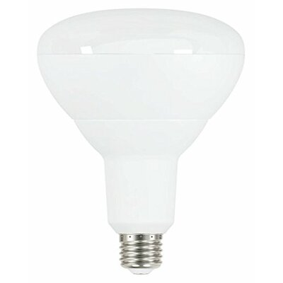 15W Frosted BR40 E26 LED Light Bulb (Set of 6)