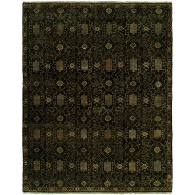Gunilla Hand Knotted Wool Black Area Rug Rug Size: Rectangle 9 x 12