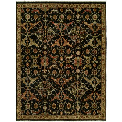 Hermon Hand Knotted Wool Black Area Rug Rug Size: Rectangle 9 x 12