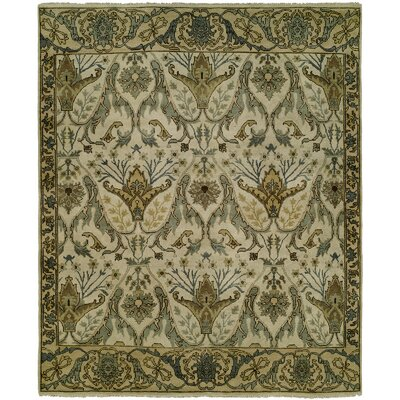 McDaniel Hand Knotted Wool Cream/Olive Area Rug Rug Size: Rectangle 6 x 9