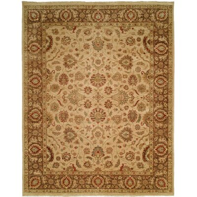 Mcgarity Hand Knotted Wool Ivory/Brown Area Rug Rug Size: Rectangle 12 x 18