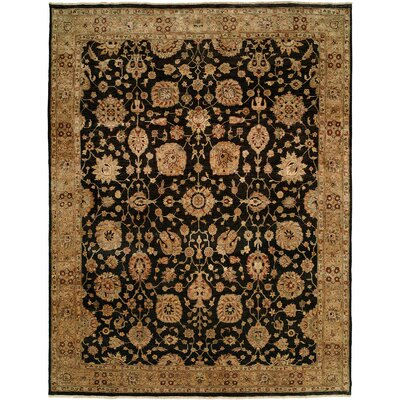Eshan Hand Knotted Wool Black/Beige Area Rug Rug Size: Rectangle 4 x 6