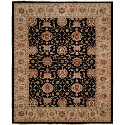 Elena Hand Knotted Wool Black/Beige Area Rug Rug Size: Rectangle 4 x 6