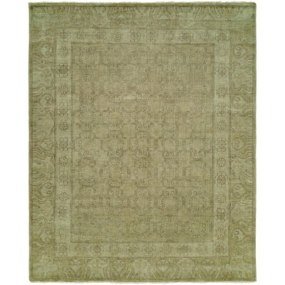Maxwell Hand Knotted Wool Olive Area Rug Rug Size: Rectangle 10 x 14