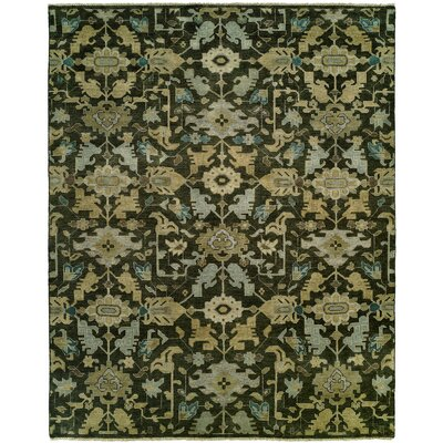 Bhavin Hand Knotted Wool Brown Area Rug Rug Size: Rectangle 9 x 12