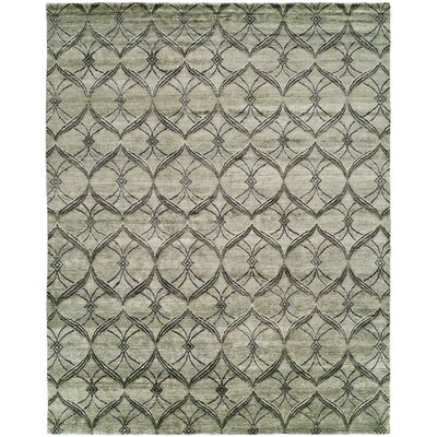 Montauk Hand-Knotted Gray Area Rug Rug Size: Rectangle 4 x 6