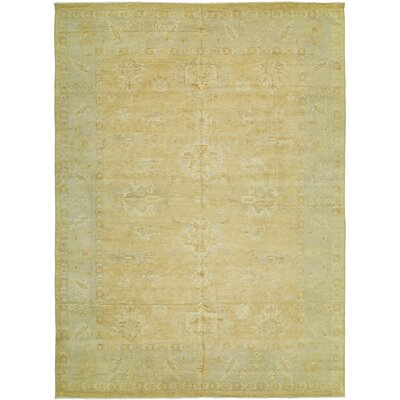 Herrin Hand Knotted Wool Terracotta/Blue Area Rug Rug Size: Rectangle 6' x 9'
