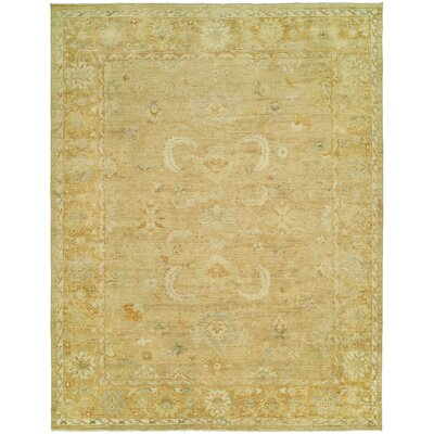 Matheson Hand Knotted Wool Gold Area Rug Rug Size: Rectangle 4 x 6