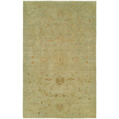 Jasmine Hand Knotted Wool Beige Area Rug Rug Size: Rectangle 4 x 6