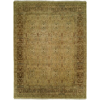 Mcmullin Hand Knotted Wool Tan/Brown Area Rug Rug Size: Rectangle 10 x 14