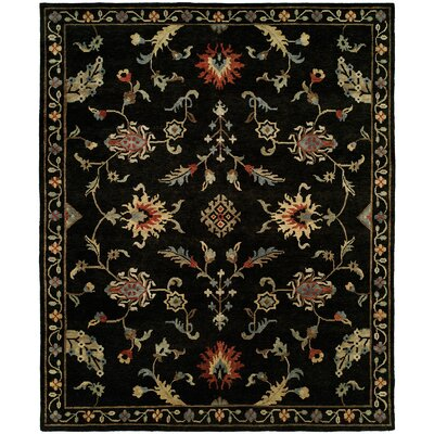 Pranay Hand Knotted Wool Black Area Rug Rug Size: Rectangle 6' x 9'