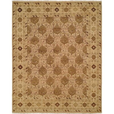 Mcandrews Hand Knotted Wool Tan Area Rug Rug Size: Rectangle 9 x 12