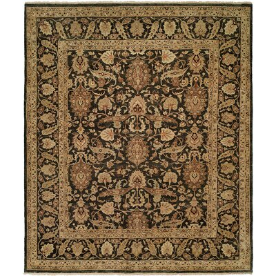 McCook Hand Knotted Wool Black/Tan Area Rug Rug Size: Rectangle 4 x 6