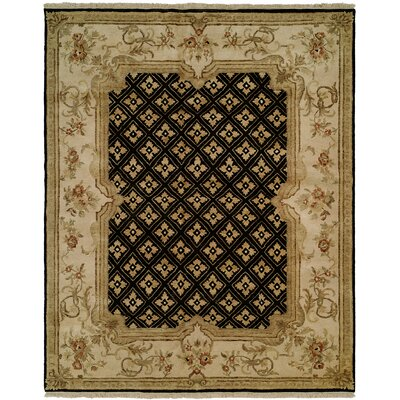 Marvin Hand Knotted Wool Black/Ivory Area Rug Rug Size: Rectangle 8' x 10'