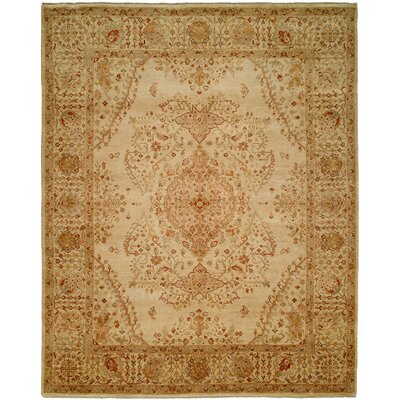 Maurer Hand Knotted Wool Ivory Area Rug Rug Size: Rectangle 6 x 9