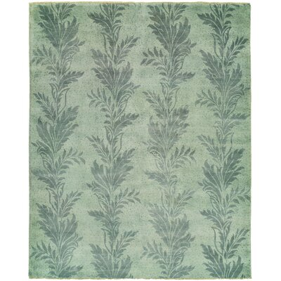 Mehdi Hand-Knotted Wool Green Area Rug Rug Size: Rectangle 4 x 6