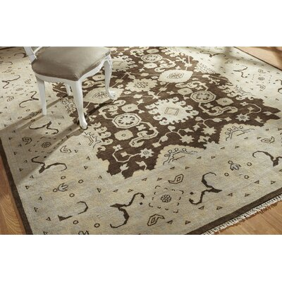 Zelida Hand Knotted Wool Brown/Ivory Area Rug Rug Size: Rectangle 9 x 12
