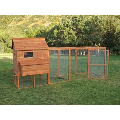 Ranch Chicken Coop With Roosting Bar