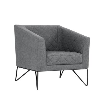 5west Princeton Occasional Armchair Upholstery: Dark Gray