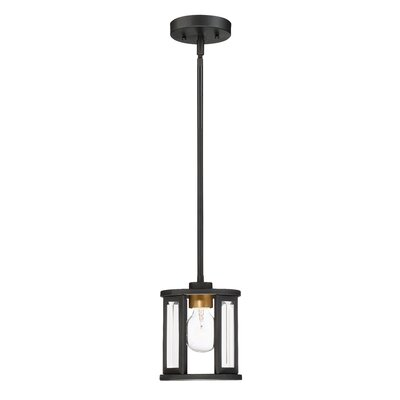 Wegener 1-Light Mini Pendant