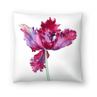 Parrot Tulip No 5 Throw Pillow Size: 14 x 14