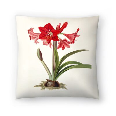 Amaryllis Johnsoni Throw Pillow Size: 18 x 18