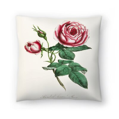 American Flora Rose Throw Pillow Size: 16 x 16