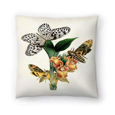Dhm Throw Pillow Size: 14 x 14, Color: Ivory