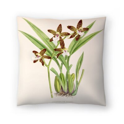 Fitch Orchid Zygopetalum Burkei Throw Pillow Size: 20 x 20