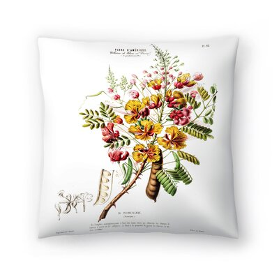 Flored Amerique Lapoincillade Throw Pillow Size: 14 x 14
