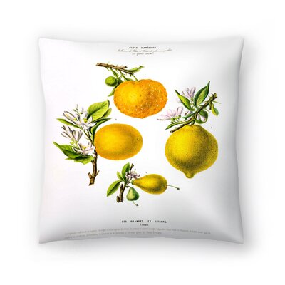 Flored Amerique Lesoranges Etcitrons Throw Pillow Size: 18 x 18