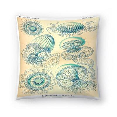 Haeckel Plate 36 Throw Pillow Size: 18 x 18