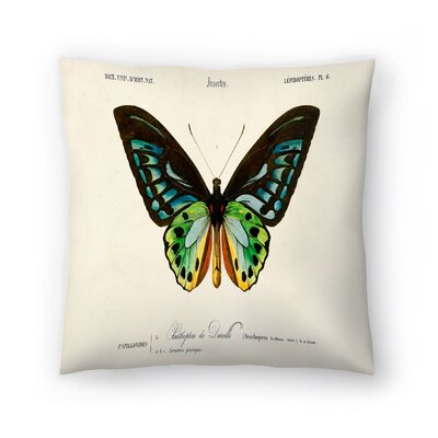 Insectes Throw Pillow Size: 18 x 18