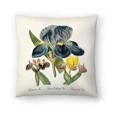 Iris Throw Pillow Size: 18 x 18