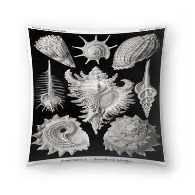 Haeckel Plate 53 Throw Pillow Size: 18 x 18