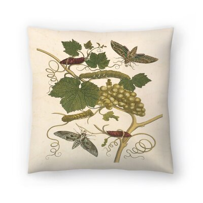 Green Grapes Throw Pillow Size: 16 x 16