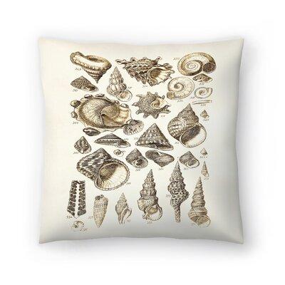 Shells 2 Throw Pillow Size: 18 x 18